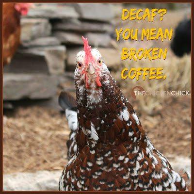 Decaf? You mean broken coffee.
