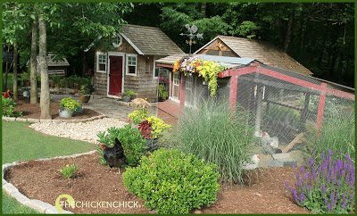 Chicken yard in Suffield, Connecticut via www.The-Chicken-Chick.com