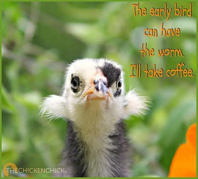 The early bird can have the worm. I'll take coffee.