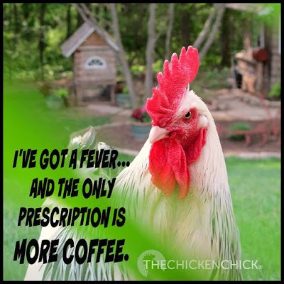 I've got a fever and the only prescription is MORE COFFEE.