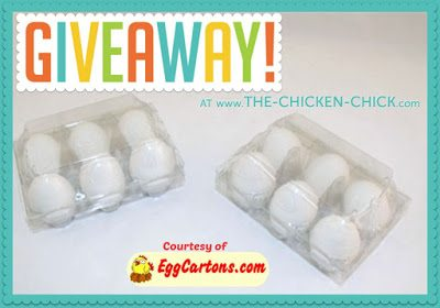Clear Egg Carton Giveaway sponsored by EggCartons.com at www.The-Chicken-Chick.com