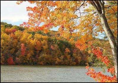 Sunrise Park, fall foliage in Suffield Connecticut. Leaf peeping photo safari in Connecticut. via The Chicken Chick®