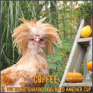 Coffee: If you're not shaking, you need another cup.
