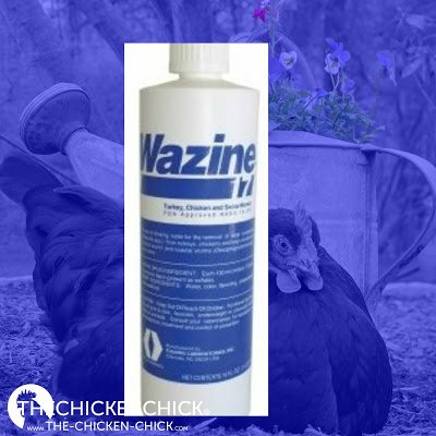 Worms | Wazine-17 (Piperazine) is USDA approved for use in laying hens for roundworms. 1 ounce per gallon of water as only source of drinking water for one day. Offer fresh water for 13 days, then repeat one day treatment.