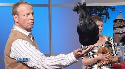 Scot Haney, WFSB Channel 3, Better Connecticut with Petey, an Araucana pullet