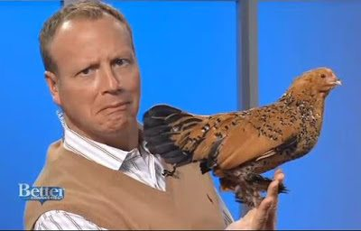 Scot Haney, WFSB Channel 3, Better Connecticut with a Mille fleur d'Uccle pullet