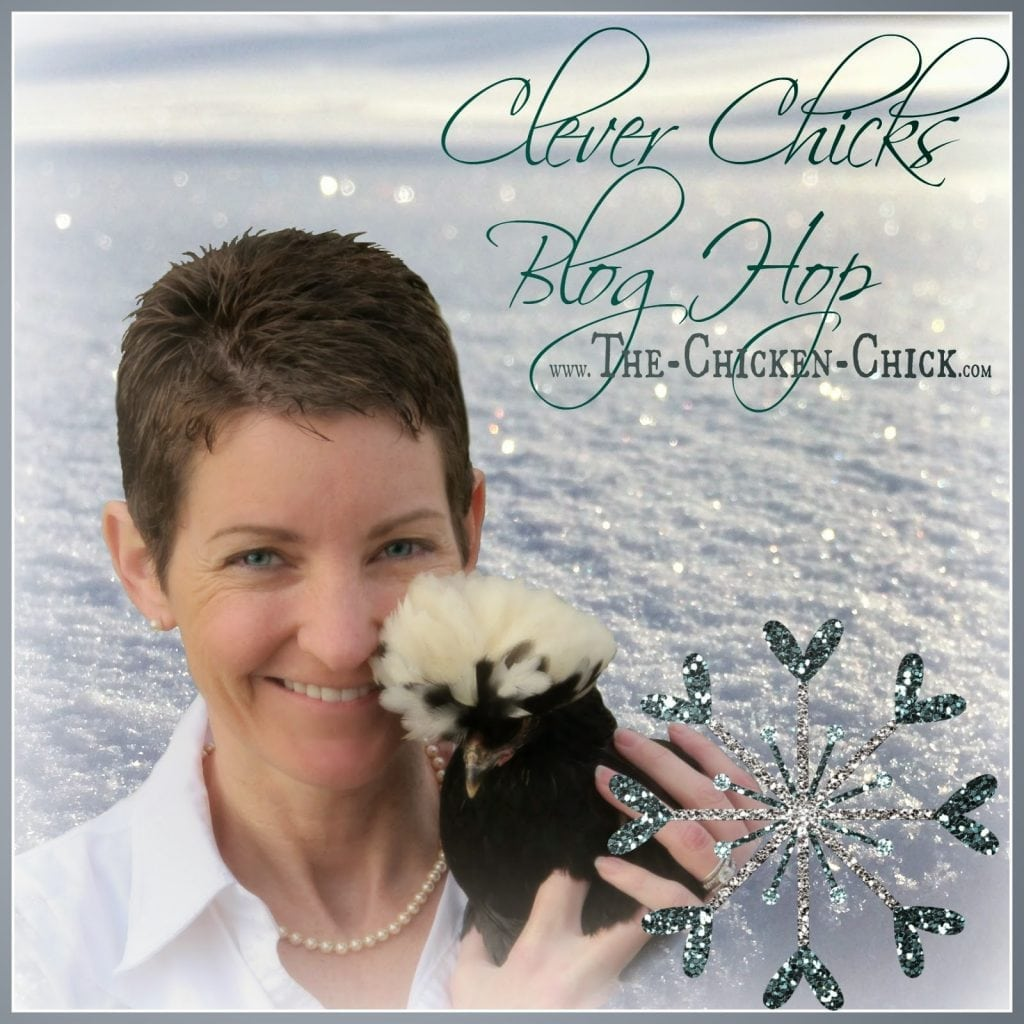Clever Chicks Blog Hop at The Chicken Chick®