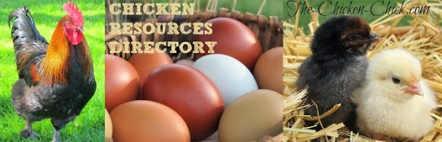 Chicken Resources Directory at The Chicken Chick®