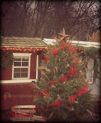 Chicken yard cattails Christmas Tree.