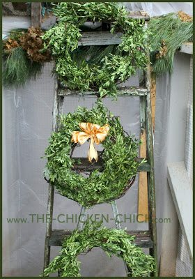 Barbed wire and grapevine boxwood wreaths.