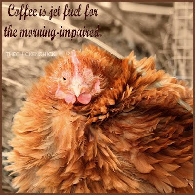 Coffee is jet fuel for the morning impaired.