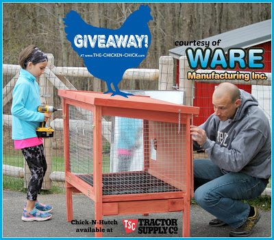 Chick-N-Hutch Giveaway at The Chicken Chick sponsored by Ware Mfg, Inc.