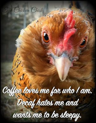 Coffee loves me for who I am. Decaf hates me and wants me to be sleepy.