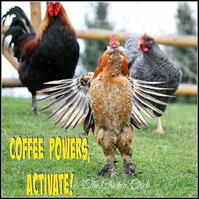 Coffee powers, ACTIVATE!