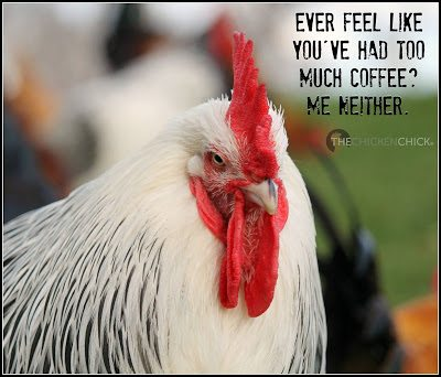Ever feel like you've had too much coffee? Me neither.