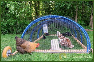 The Playpen Method of flock integration.