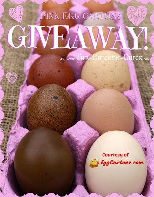 Enter to WIN 25 PINK recycled fiber Egg Cartons, courtesy of EggCartons.com at The Chicken Chick blog