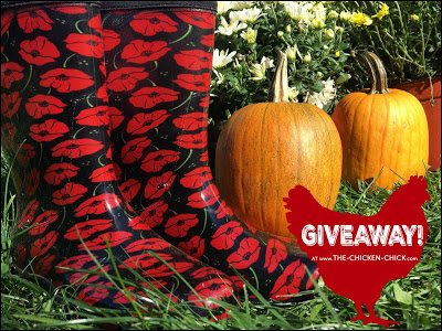Sloggers Boots GIVEAWAY at www.The-Chicken-Chick.com