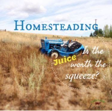 Homesteading: Is the Juice Worth the Squeeze, shared by Livin Lovin Farmin at The Chicken Chick's Clever Chicks Blog Hop