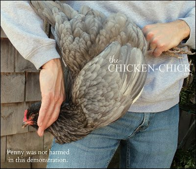 Euthanasia for Backyard Chickens from The Chicken Vet