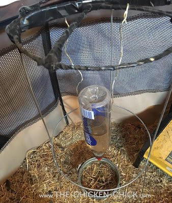 DIY Poultry Nipple Drinker Stand via The Chicken Chick®