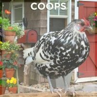 coops