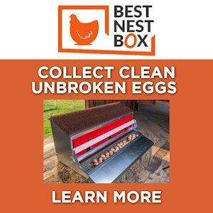 Best Nest Box