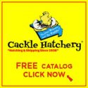 Cackle Hatchery