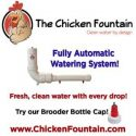 The Chicken Fountain