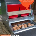 Best Nest Box Giveaway at www.The-Chicken-Chick.com